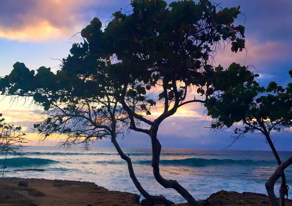 beautiful-hawaii