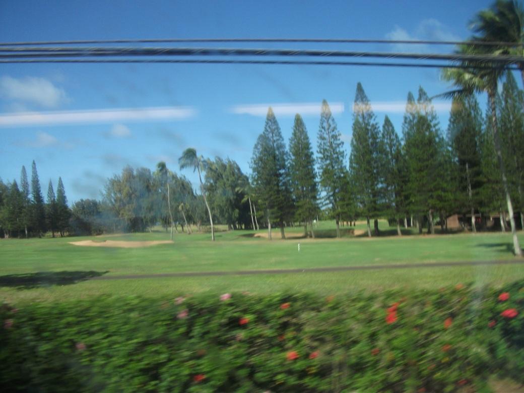 Hilton Turtle Bay Golf Course