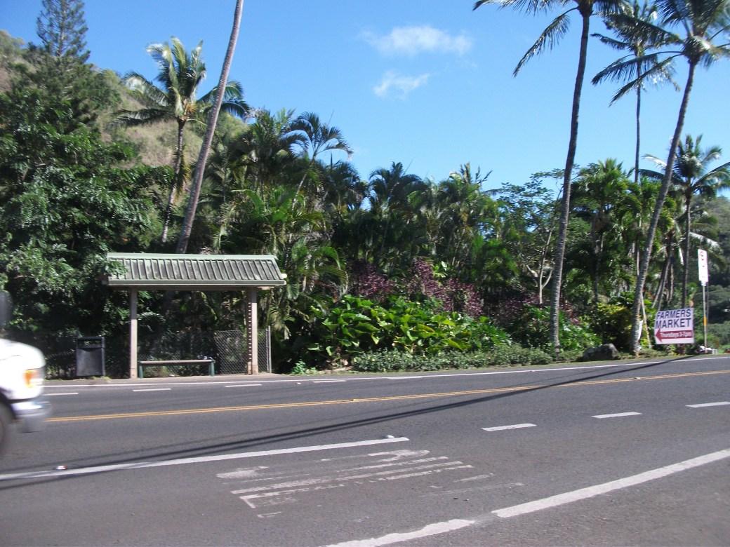 Waimea Bay Beach Park, The Bus stop